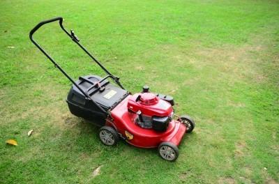 Nákup nové zahradní sekačky