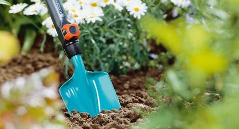 Jak připravit zahradu na jaro: 7 kroků, které byste neměli vynechat