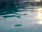 Co všechno udělat pro křišťálově čistou vodu v bazénu